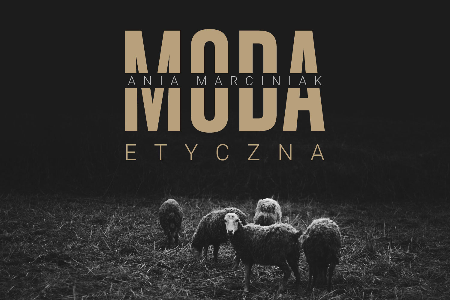 You are currently viewing Moda Etyczna